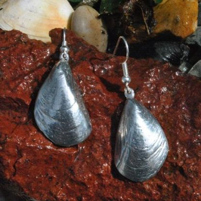 Mussel shell earrings E107